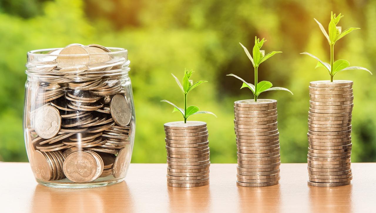 akcijų pasirinkimo sandorių programa